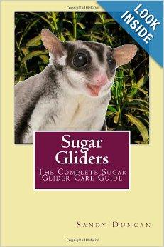 Sugar Glider Book